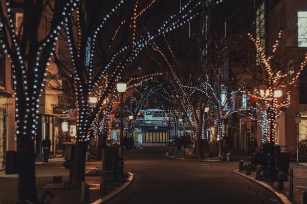 日本美麗街道
